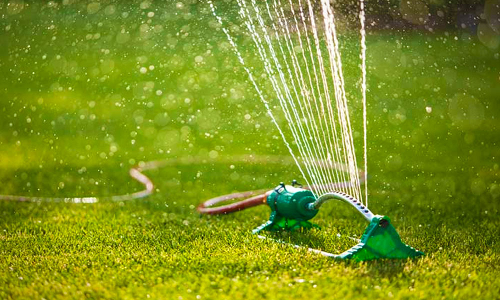 A forróság miatt vízkorlátozást vezettek be Budapest környékén több településen, mégis mi legyen most akkor a kerttel?