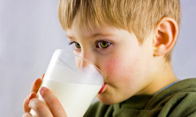Szerencsére nem találtak mérgezett tejet az Auchan és a Spar polcain