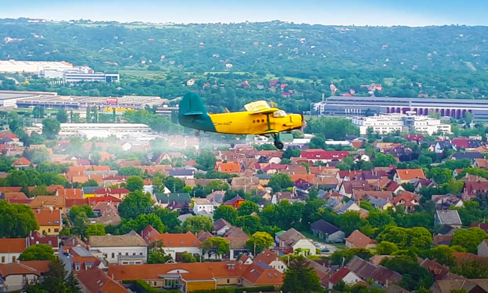 Szúnyoginvázió: azonnali segítséget kérnek a belügyminisztertől a Dunakanyar településeinek polgármesterei