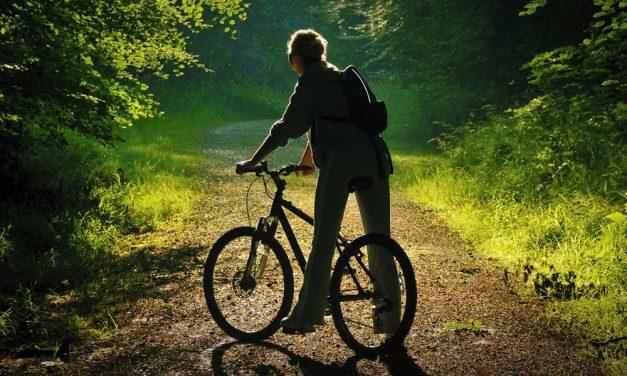 Bringázz a Pilisben! Most bővítették a Pilis Bike erdei kerékpáros úthálózatot