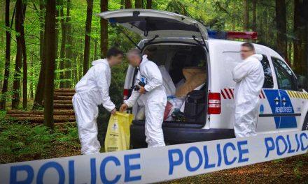Gyilkosság: Egy Szentendre melletti erdőből került elő a luxusautó-kereskedő férfi holtteste