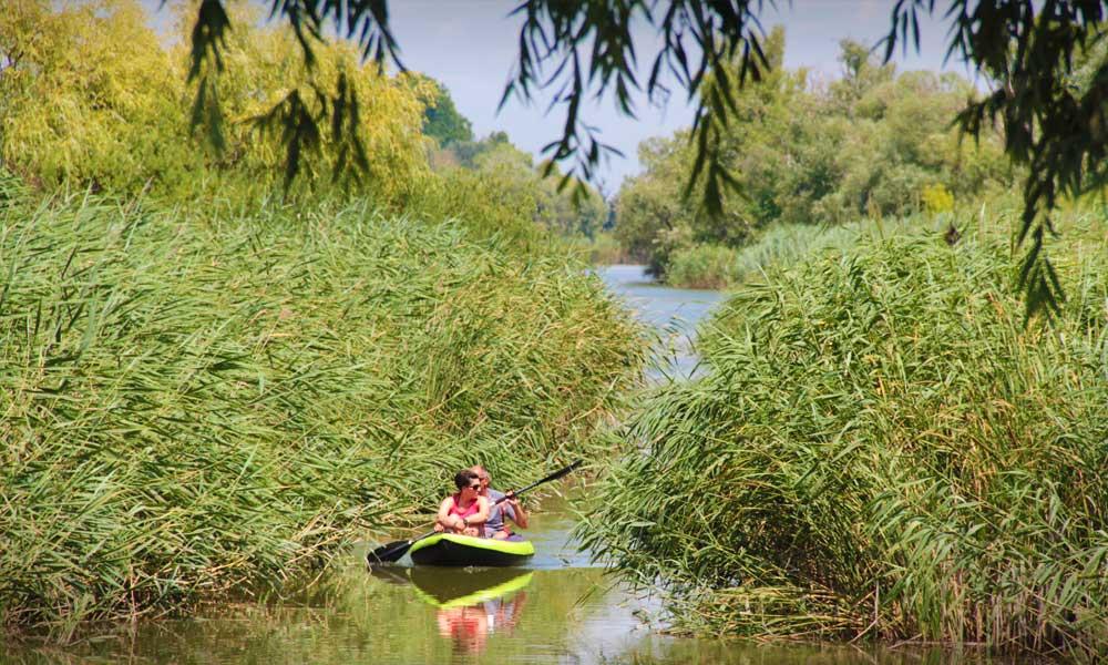 Úszóláp Szigetszentmiklósnál: Mesebeli fák és kalandokkal teli ösvény