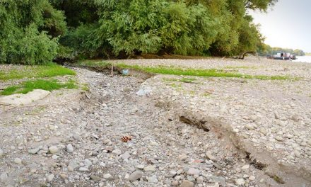A belügyminiszter vízhiányos állapotot hirdetett, kiszáradt a szentendrei Sztaravoda patak is!