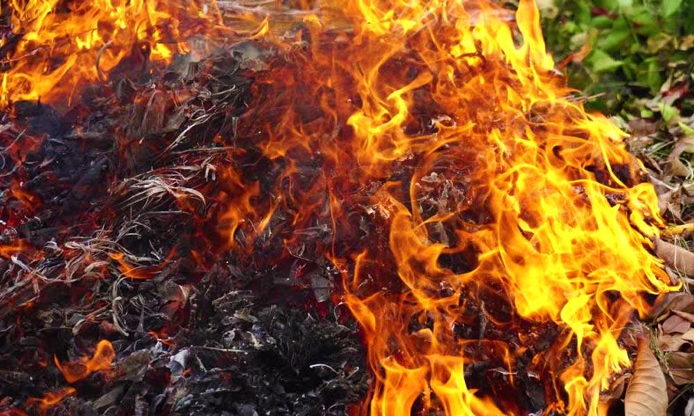 Elég volt a füstből! Újabb településen tiltják be a kerti tűzgyújtást