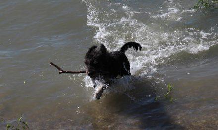 Kutya meleg lesz a héten, 30 fok körüli maximumokra kell számítani
