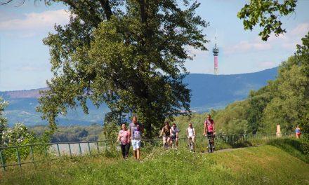 Elegük lett a Dunakanyarban élőknek abból, hogy pocsékul szólnak a magyar rádiók
