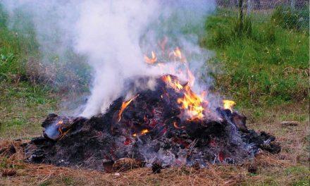 Végleg betiltanák a zöldhulladék égetését az agglomerációban is