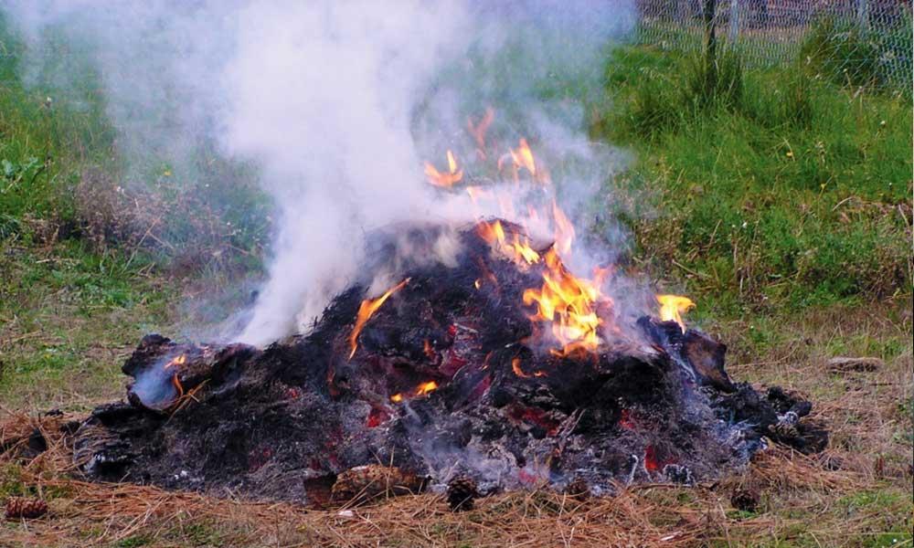 Mégsem tiltják be a kertihulladék-égetést január 1-től, a koronavírus miatt lehet füstölni az udvarban