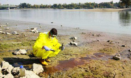 Rákkeltő mérgek folynak a Dunába a főváros feletti szakaszon, a vízművek is résen van