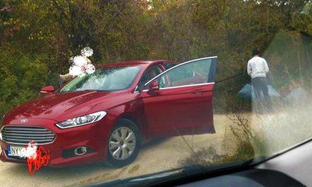 Szép autó, jól szituált nő, a zöldhulladékot mégis az erdő szélén rakja le – itt a bírság összege!