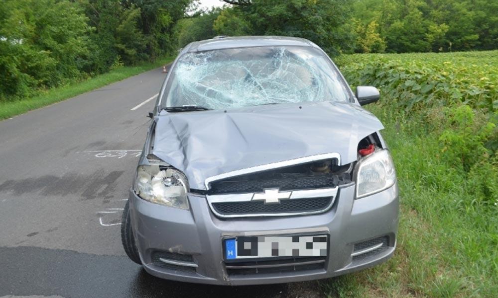 Lovak szaladtak az útra, csúnyán elintézték az autót