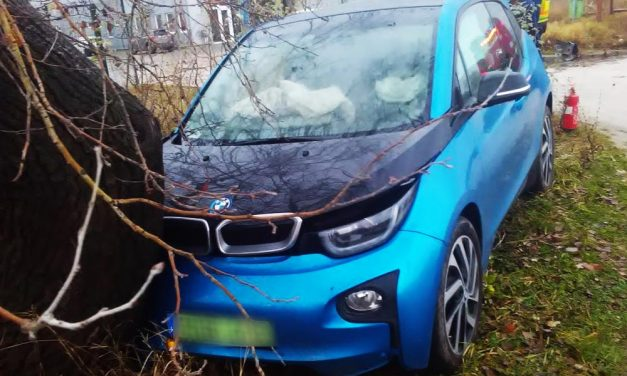 Így néz ki egy 10 milliós elektromos BMW és egy fa csókja – fotók