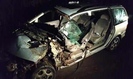 Tragédia! Lehajtott az útról, fának csapódott, a sofőr meghalt – Fotók