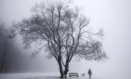 Havazott a budai hegyekben, egyes helyeken 10 cm hó is összegyűlhet