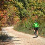 Kerékpárutat építenének Remeteszőlősnél egy védett szurdokban