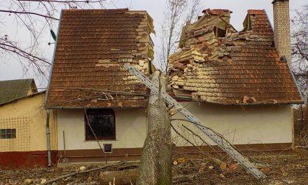 Kettéhasította a családi házat egy óriási fa Üllőn