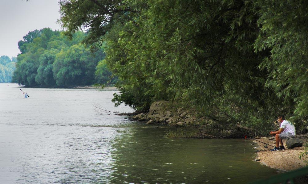 Dunába süllyedt egy kajakos, nem tudták megmenteni