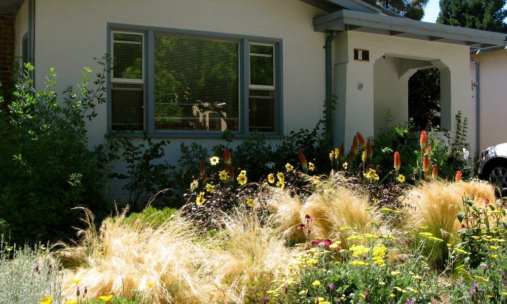 5 egyszerű dolog, amitől irigy lesz a szomszéd a kertedre