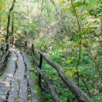 Jági tanösvény: Megszépül ez a pilisi kirándulóhely