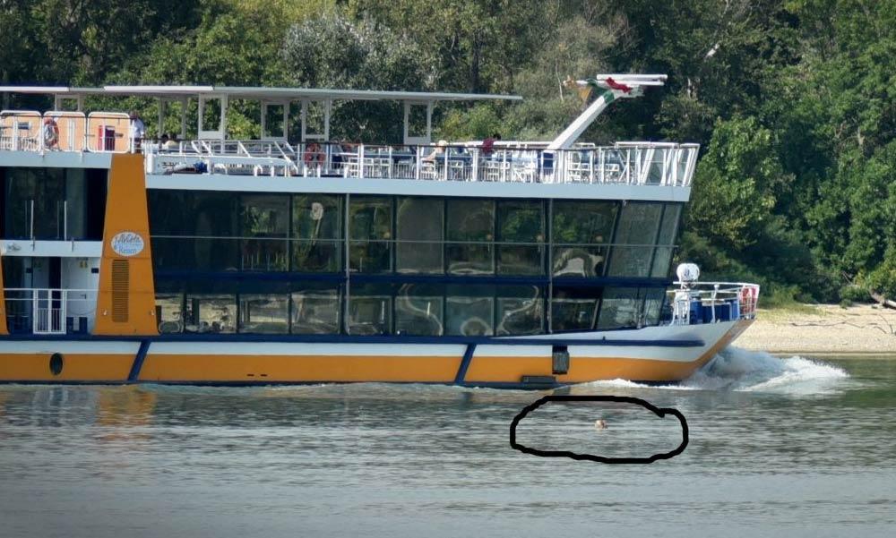 A Dunában úszott egy nő, majdnem átment rajta két szállodahajó