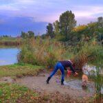 A Bucka-tó Szigetszentmiklóson az ostoba környezetszennyezés méregdrága példája