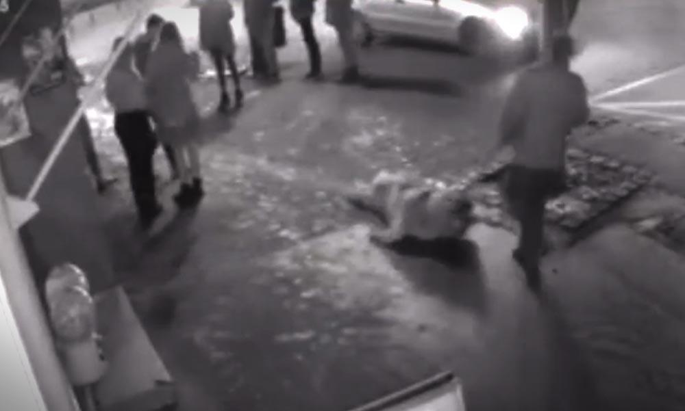 Az utcán vonszolt végig egy kutyát a kegyetlen állatkínzó (18+Videó)