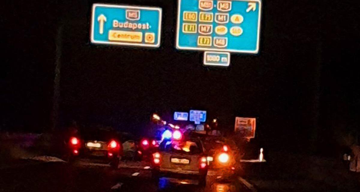 Megriadt tehenek miatt lezárták az M5-ös autópályát