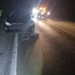 Három vaddisznót gázolt egy autós a 10-es úton