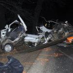 Meghalt egy fának csapódó autó sofőrje a pesti agglomerációban