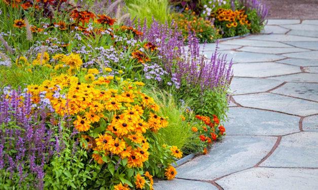 Esztétikus felületkialakítás a kertben? Több lehetőség közül is választhatunk