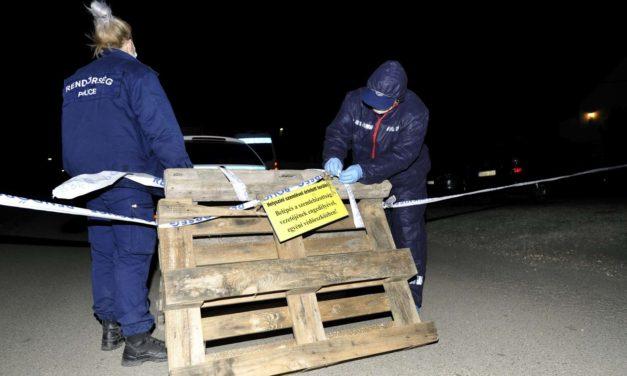 Kacatok között találták meg Szentendrén a csecsemő maradványait