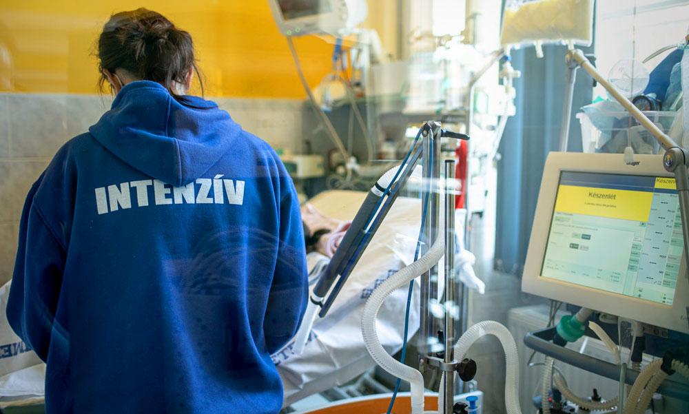 Kigyógyult a koronavírusból egy 7 éves kislány a Semmelweis Egyetemen