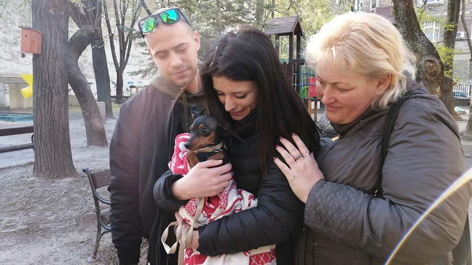 Megtalálták a villamoson megkéselt férfi kiskutyáját