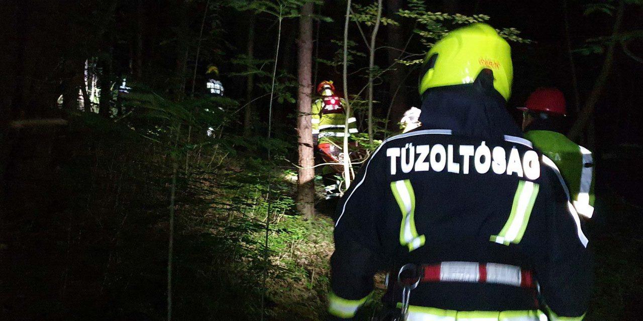 Balesetet szenvedett egy 7 éves gyermek a Pilisben – egy szakadékba esett le