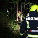 Egy férfi holttestét találták meg a pilisszentiváni erdőben