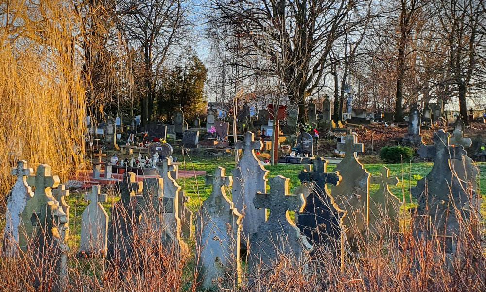 Megszólalt a rendőrség a szentendrei halottasházban talált állapotok kapcsán, a temető üzemeltetője közben konyha hasonlatot használt az elhunytak tárolásával kapcsolatban