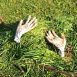Gondoljunk másként a zöldhulladékra, lehet, hogy az nem is szemét – állítja a kertszakértő