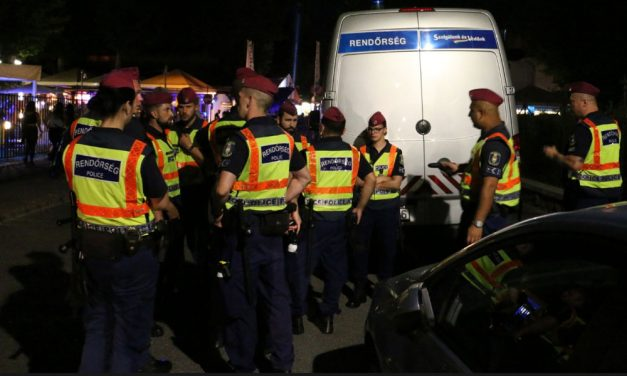 Razziáztak a rendőrök a budapesti éjszakában