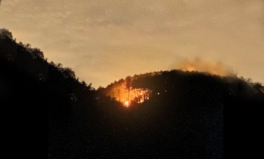 Lángolt az erdő a budai oldalon a Pilisben