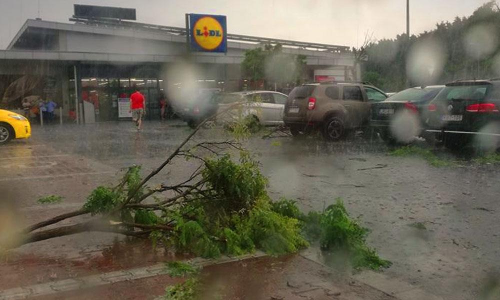Valami történt a Lidl-nél, szétrobbant fákat láttak a parkolóban