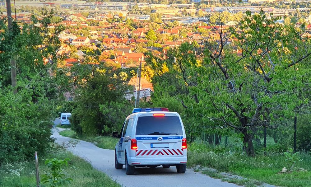 """""""Várom a pontos címet és indulok utánuk"""" – több száz kilométerre találták meg a Szentendréről eltűnt édesanyát és két kiskorú gyermekét"""