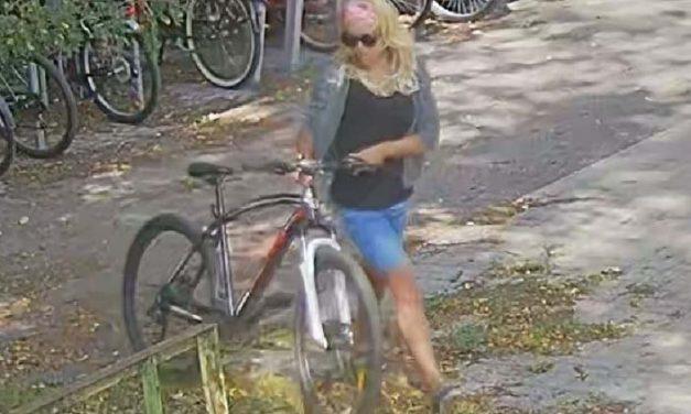 Biciklit lopott a csinos szőke Dunaharasztiban, keresi a rendőrség