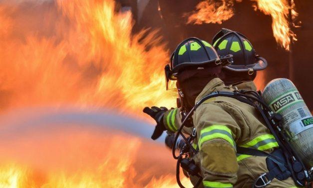 Két tűzeset is történt Pest megyében néhány óra leforgása alatt: az egyik ingatlanból egy kiskutyát mentettek ki a rendőrök – videó
