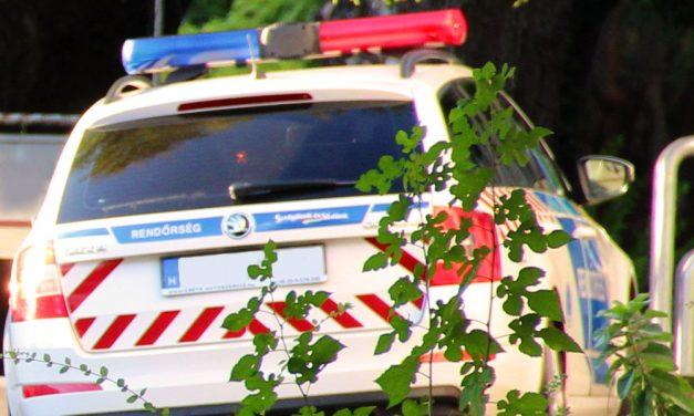 Játékpisztollyal rabolt egy fiatalokból álló banda, a társaság a Gellért-hegyen garázdálkodott