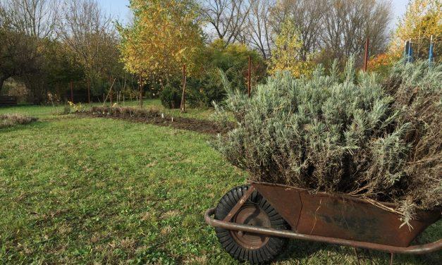 Megnyílik a föld méhe, újra lehet ültetni