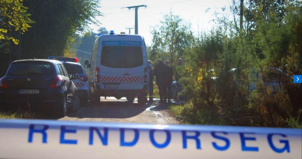 Titokzatos holttestet találtak az M5-ös autópálya mellett, 300 ezer forintot kap, aki azonosítja az elkövetőt