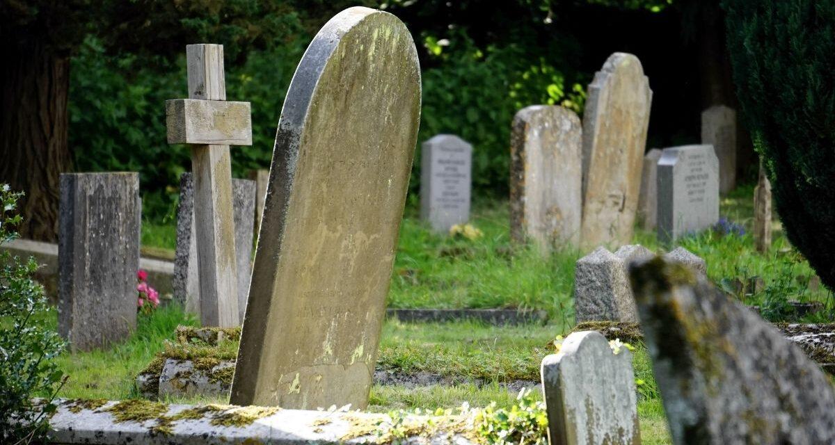 Bonyolódik az ügy a szentendrei halottasház körül: rémhírterjesztés miatt indult eljárás