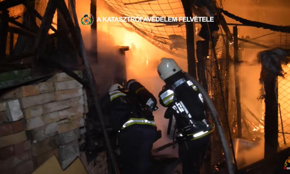 Felrobbant egy gázpalack egy budapesti tűzben, a helyszínen lovakat mentettek a tűzoltók