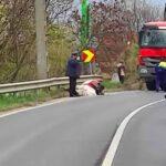 Betonkeverővel ütközött egy elszabadult ló a Balatoni úton, tragikus vége lett a vágtának,