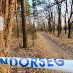 Rémálom Csillebércen: a gyermekvasúttól induló túraútvonalon erőszakoskodott egy nővel a 19 éves férfi